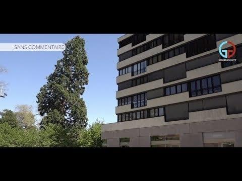 Écoquartier Jonction Genève: 3 ans déjà !